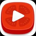 番茄视频app手机下载