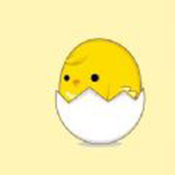 你是否看到一只鸡