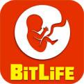 BitLifeiOS版下载