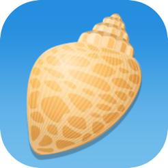 Shell scastle