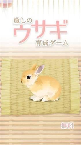 治愈系兔子养成